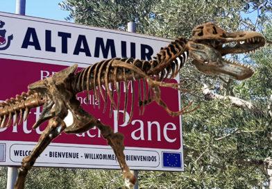 Altamura: la Città del Pane, della Focaccia e dei Dinosauri