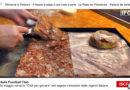 TG PASTA e PIZZA: Sfincione di Palermo, Napoli Pizza del Presidente, Tortellino di Gallarate